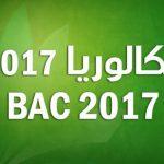 بكالوريا 2017 ... أسماء الأوائل في الامتحان الوطني  بمعدل 17 فما فوق بإقليم سيدي إفني