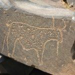 البرنامج الكامل للملتقى الأول للنقوش الصخرية بجماعة بوطروش