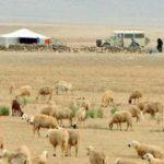 جماعة تزود الرحل بالماء مجانا ودواوير تابعة للجماعة تعاني من انعدام الماء الشروب
