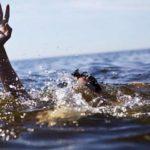 غرق صياد بالقصبة وهو موظف بشاطئ ضواحي سيدي إفني