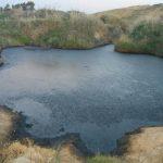 نفايات معاصر الزيتون تهدد البيئة والموارد المائية