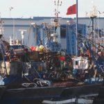 السردين يتدفق بكميات كبيرة على ميناء سيدي إفني