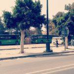 تيزنيت -  سيدي إفني  ....  كورونا وأزمة النقل